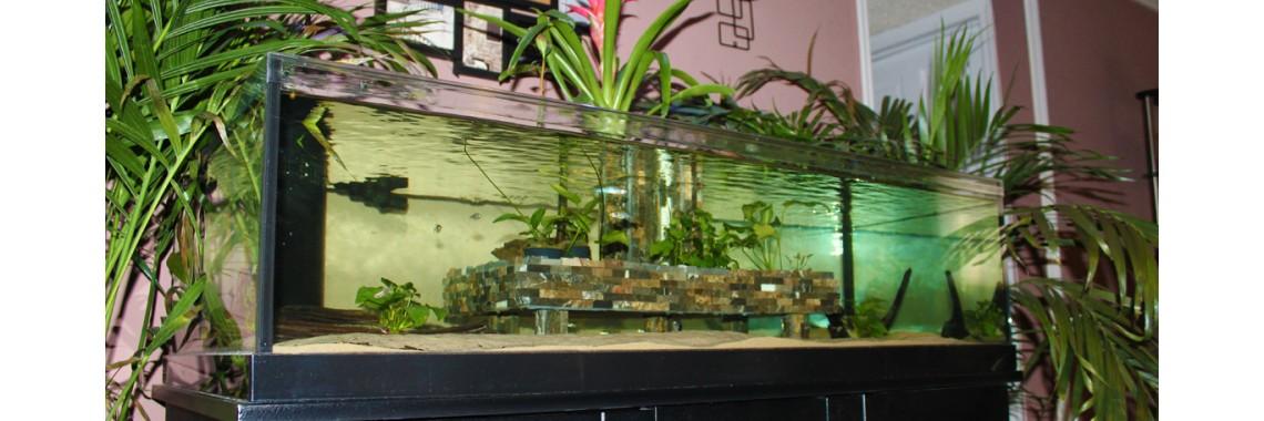 Rimless Aquarium Lid 3